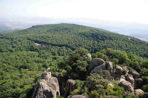 Feija_national_park (4)