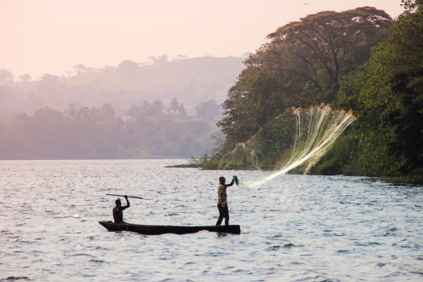 Fisherman throws a net in Lake Victoria.